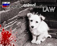 Help Protect Russia's Animals