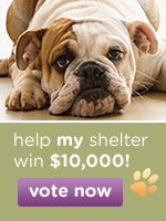 America's Favorite Animal Shelter Contest - help your animal shelter win $10,000 - vote today!