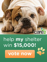 America's Favorite Animal Shelter Contest - help your animal shelter win $15,000 - vote today!