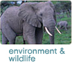 Environment & Wildlife