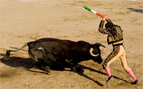 Success: Catalonia, Spain Bans Bullfighting!