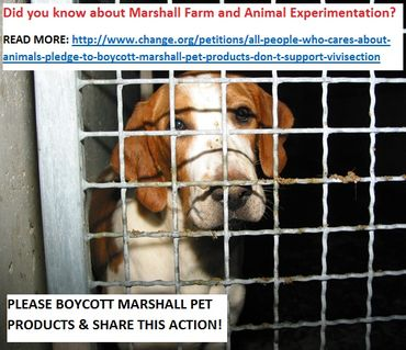 TAKE ACTION! Send an eCard against Marshall Farm and animal experimentation | Care2 Share