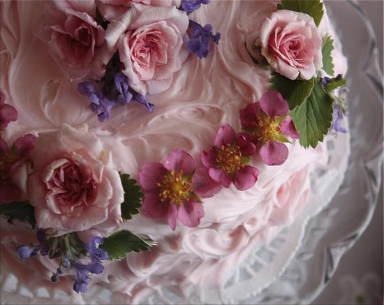 bellas_rose_cottage-pink_cake_7-e1283003996710.jpg