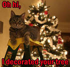 Christmas Tree Cat.jpg