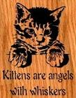 kitties are angels