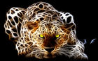 8004-1-miscellaneous-digital-art-tiger.jpg