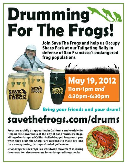 Flyer-Drumming-For-The-Frogs-2012-05-19-500.jpg