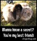 best_friend_bunny_secrets_001.jpg