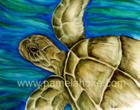Tender Turt - Green Sea Turtle Portrait