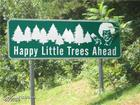 Happy little trees.jpg