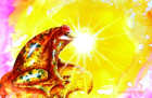 A  GOLDEN FROG _ e-mail size_.png