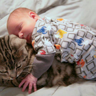 Baby Asleep on Cat