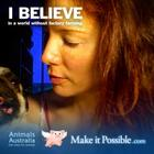 animals australia ad.jpg