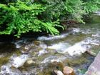 Little Pigeon River in the Smoky Mountains