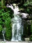 Roadside waterfall between Gatlinburg TN and Cherokee NC in the Smoky Mountains