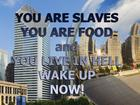 YOU ARE SLAVES.jpg