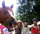 Funny horse upstages kids!