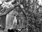 Black and white of Old Mill 052E.jpg