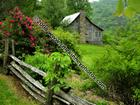 Country home in Robbinsville_ NC 046E.jpg