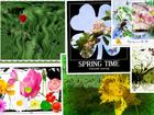 collage-2014-03-07 _Small_.jpg