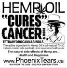 _cannabis_cures_cancer-_august_2010_-_reversed-grayscale_0.jpg