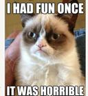 Funny-Cats-Top-49-Most-Funniest-Grumpy-Cat-Quotes-13.jpg