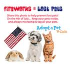 4th of July Safety for pets