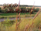 GOOD MORNING RED GRASS