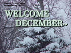 WELCOME DECEMBER SNOW COVERED PINE