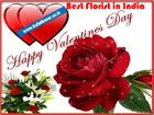 Send Flowers And Gifts In Valentine Day 2016 In India