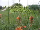 WELCOME SPRING~
