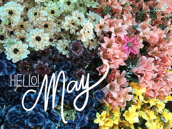 Hello-May-Flowers.jpg