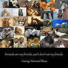 animals are my friends.jpg