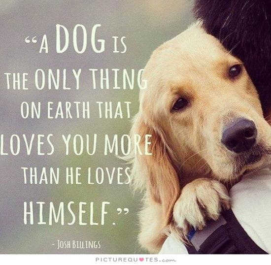 a-dog-is-the-only-thing-on-earth-that-loves-you-more-than-he-loves-himself-quote-2.jpg