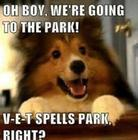 OH-BOY-WE__039_RE-OFF-TO-THE-PARK.jpg