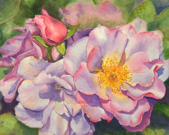 watercolor-rose-close-up.jpg