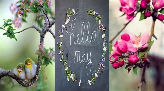 3-in-1-hello-may.jpg