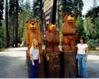 Autumn and Layla in Sequoia National Forest