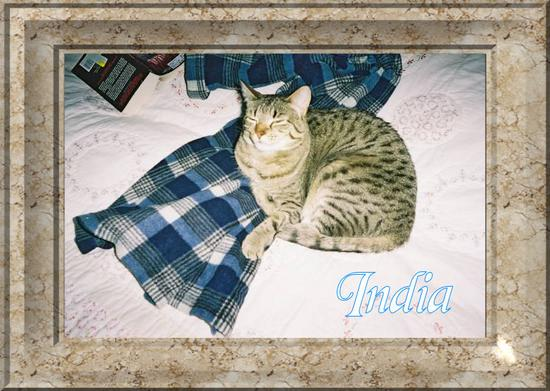 India, ready for bed...