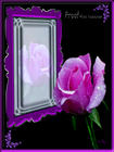 Lavender Rose Magic Mirror