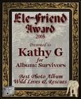 Survivors award