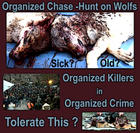 Against hunting