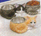 More Cat Dishes!