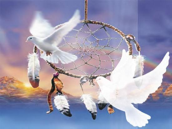 Doves Dreamcatcher