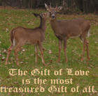 The Gift of Love is the Most Treasured Gift of All