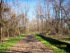 Nature Trail Done by Cnstruction Company