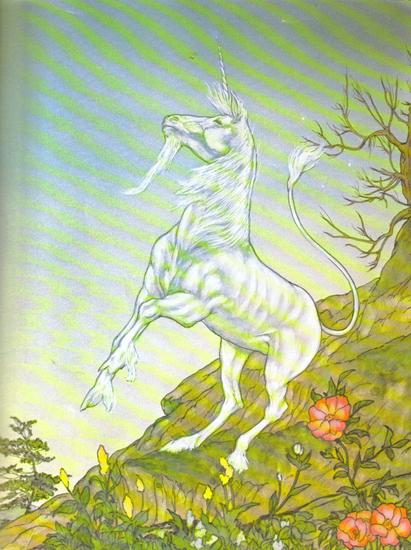 The Unicorn and the Lake Illustrated by Michael Hague 11.jpg