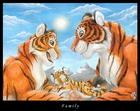 what cute tigers!