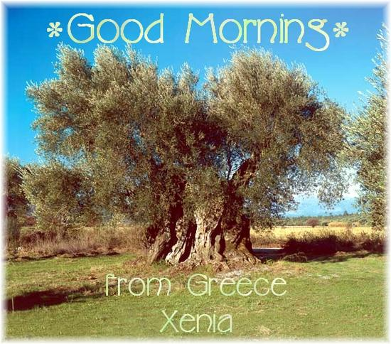 goodmorningGR xenia.jpg