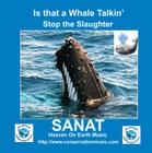 "Is that a Whale Talkin"" - Stop the Slaughter"